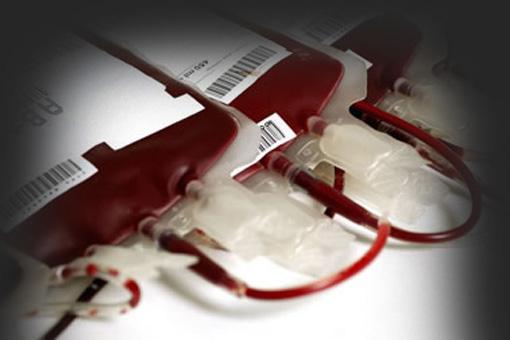 """Il sangue umano deve essere considerato un """"m..."""