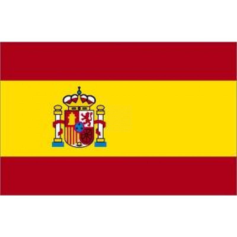 La Spagna nega il diritto di voto ad un soggetto i...