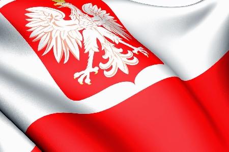 Polonia. Tutela paesaggistica e danno ambientale...