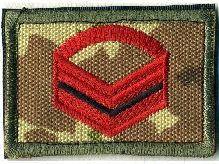 Primo C.M. del I° Reggimento Bersaglieri Cosenza, ...
