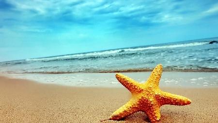 Bonus vacanze: nuovi chiarimenti dall'Agenzia dell...