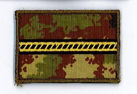 Primo Maresciallo dell'Esercito impugna il decreto...