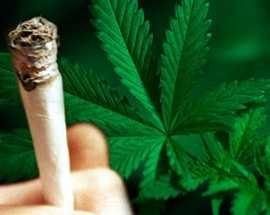 Mette ad essiccare la marijuana nel box di proprie...
